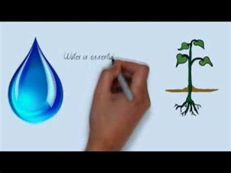 Energy conservation essay in odia